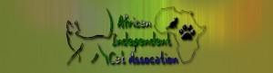 African Independent Club